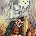 shems-movlana_qabiq