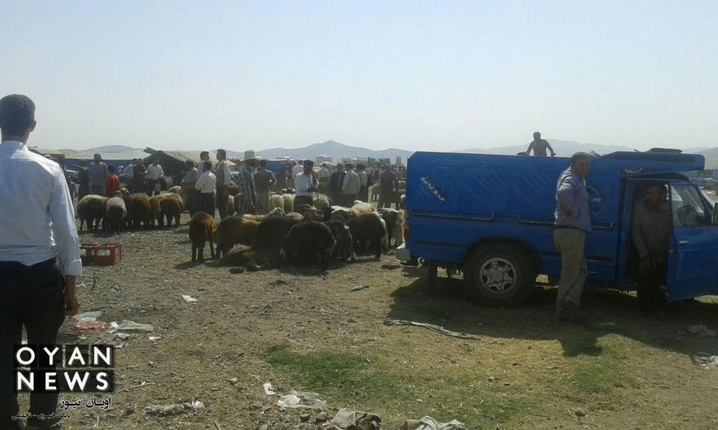 bazar-memedyar (2)