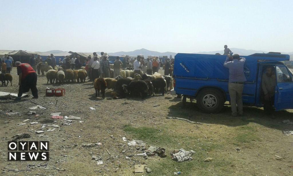 bazar-memedyar (9)