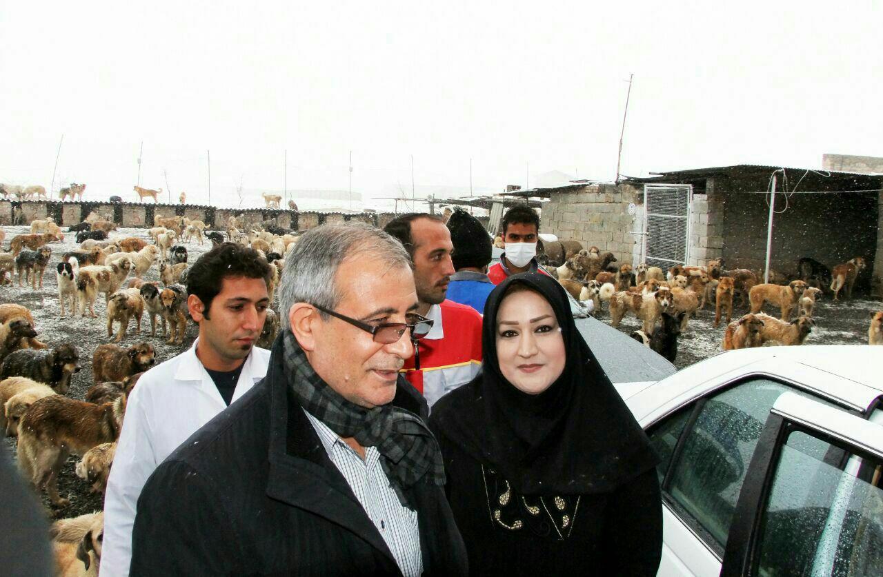 شهردار تبریز در حال بازدید از پناهگاه حیوانات پردیس